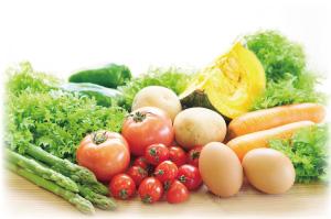 健康と豊かな心が生まれる「食」